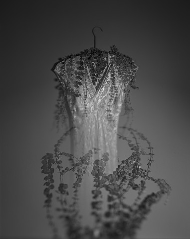 Untitled (Wedding Dress with Vines)