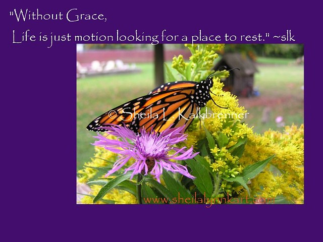 Grace and Motion