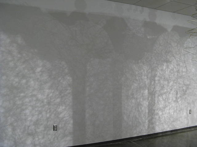 Festooned Shadows