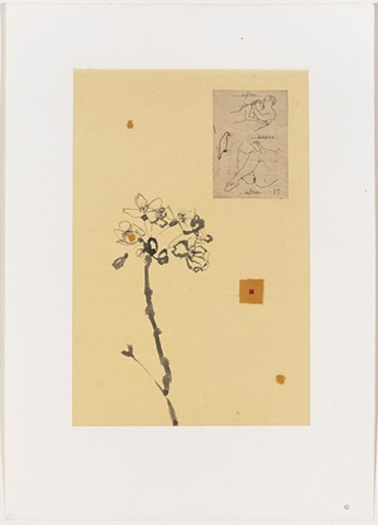 Shoichi Ida Blooming of Emotion - From note of Marcel Collaboration with Robert Kushner
