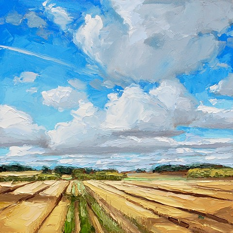 landscape, English landscapes, suffolk landscapes, palette knife landscapes, impasto painting, contemporary landscapes