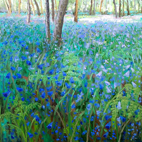 Bluebell woods edge