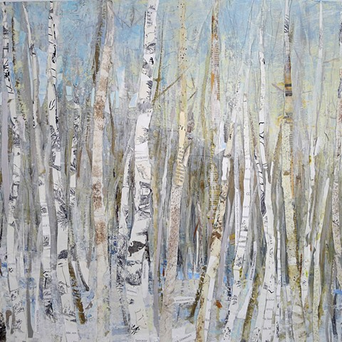winter scene with aspen and birch trees mountain Colorado snow ski country