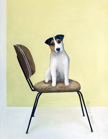 jack russell on mid century chair