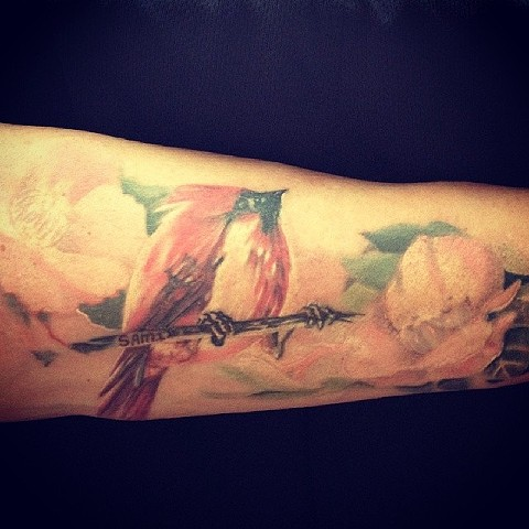 avalontattoo, pacificbeach, jasonsalinaz, tattoo, watercolortattoo, birdtattoo, flowertattoo