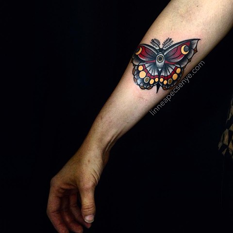 black moon moth by LINNEA in asheville nc chicago