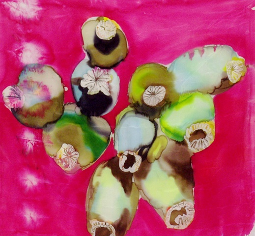 poppy flower seed pods on pink, dyed silk