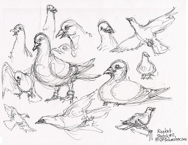 Rocket Pigeon preliminary drawing #2