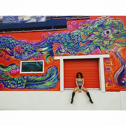 Vinatown dragon mural by Angel Quesada, Street art mural created for HUE mural festival in 2015 behind the Dynamo Stadium, Houston, Texas.