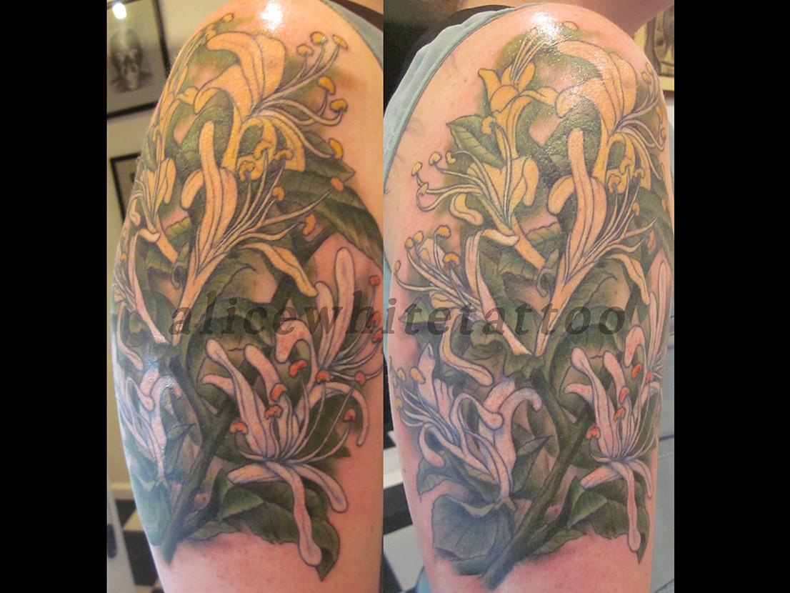 Honeysuckle Flower Tattoo Www Imgkid Com The Image Kid Has It