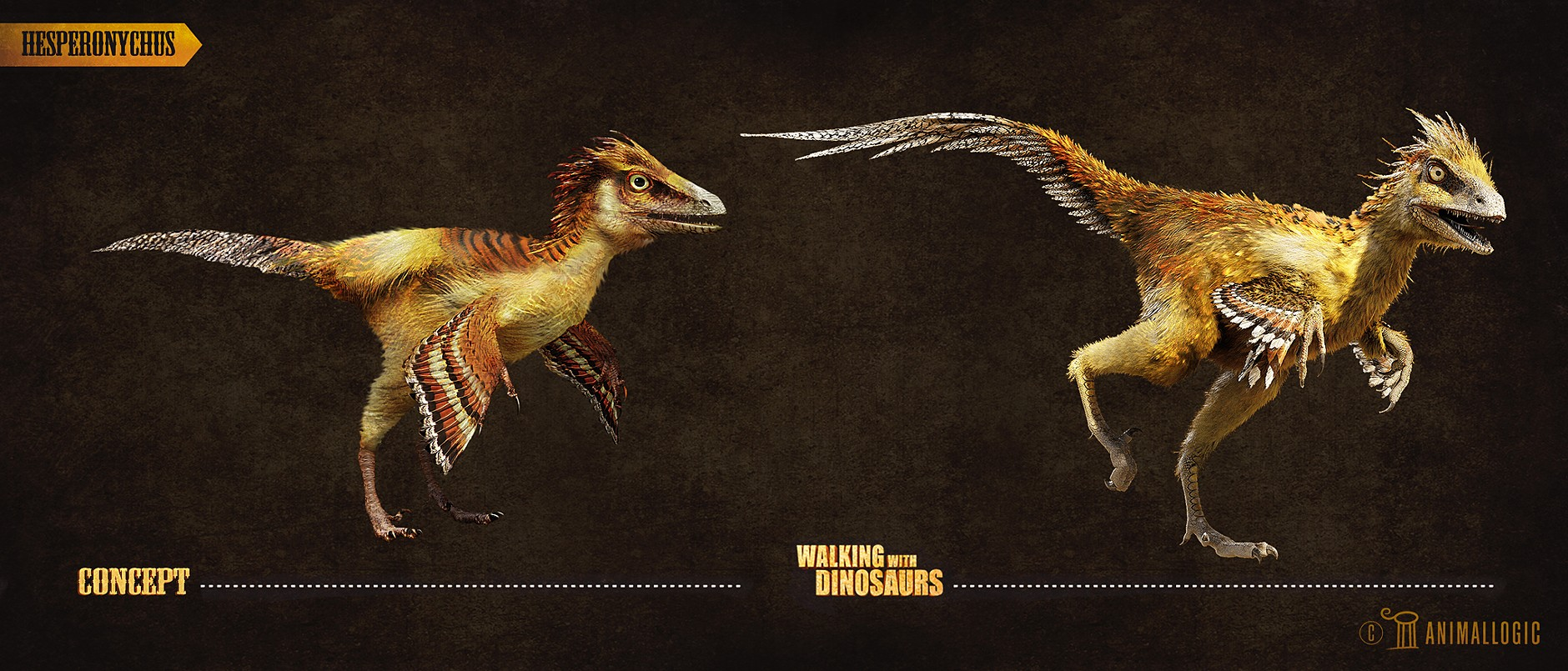 Hesperonychus | www.imgkid.com - The Image Kid Has It!