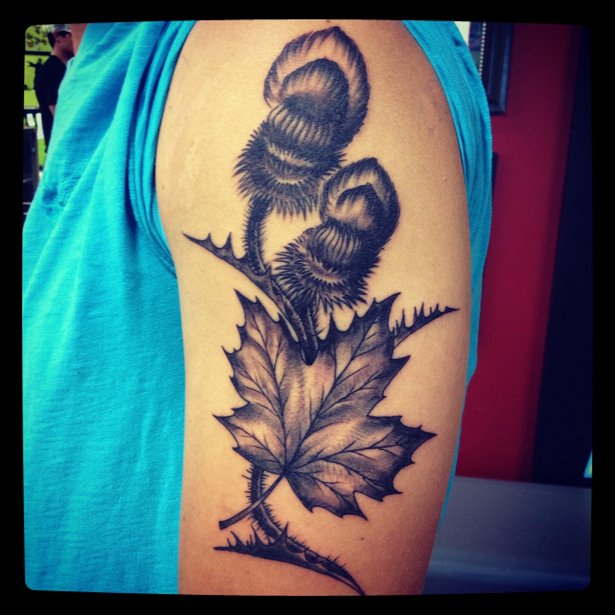 Tattoos by vincent for Canadian leaf tattoo designs