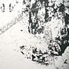 Verdant Tangle (detail)