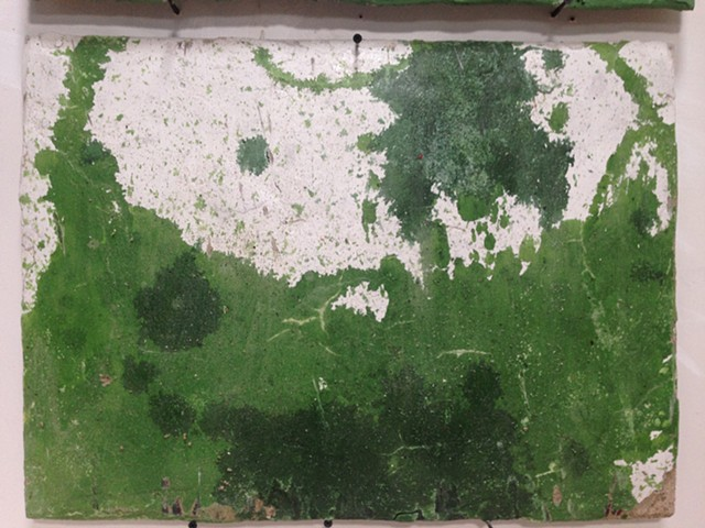 Fresco made from Wassaic Natural Selections Project