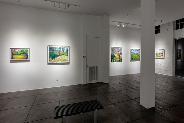 Crow Valley installation at Jonathan Ferrara Gallery