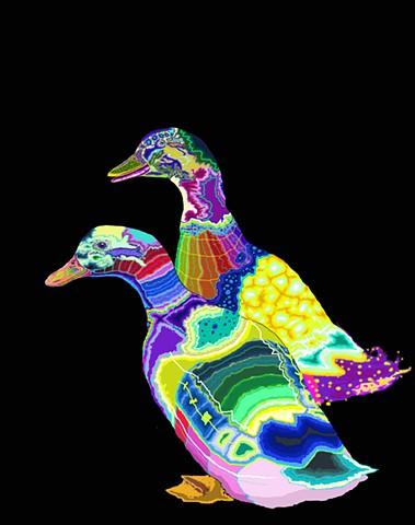 Los Brujos Ducks