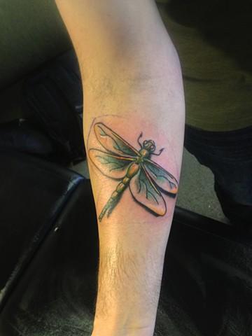Jef Wright - dragonfly tattoo,  Provincetown tattoo, Cape Cod tattoo, Ptown tattoo, truro tattoo, wellfleet tattoo, custom tattoo, coastline tattoo