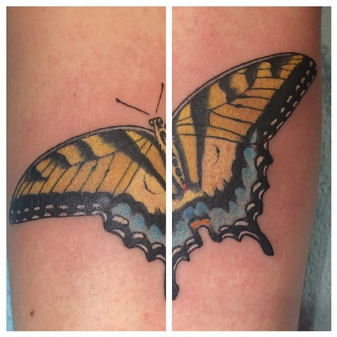 butterfly tattoo, Provincetown tattoo, Cape Cod tattoo, Ptown tattoo, truro, wellfleet, custom tattoo, coastline tattoo