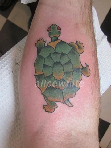 Alice White - Traditional turtle tattoo, Provincetown tattoo, Cape Cod tattoo, Ptown tattoo, truro tattoo, wellfleet tattoo, custom tattoo, coastline tattoo