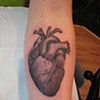 anatomical heart, black and grey, custom tattoo, Provincetown, Cape Cod, Coastline, Ptown