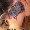 bluebird, astrological symbol cover up, custom tattoo, Provincetown, Cape Cod, Coastline, Ptown