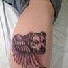 dogwings, angel dog, wings, pitbull, black and grey, custom tattoo, Provincetown, Cape Cod, Coastline, Ptown
