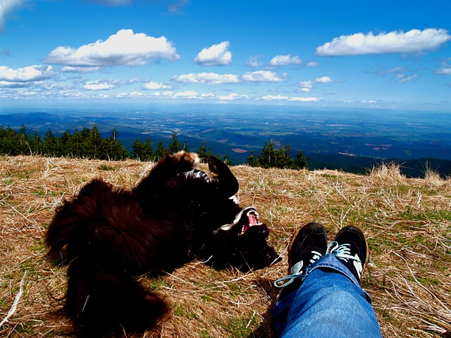 Me & Bowie on Mary's Peak