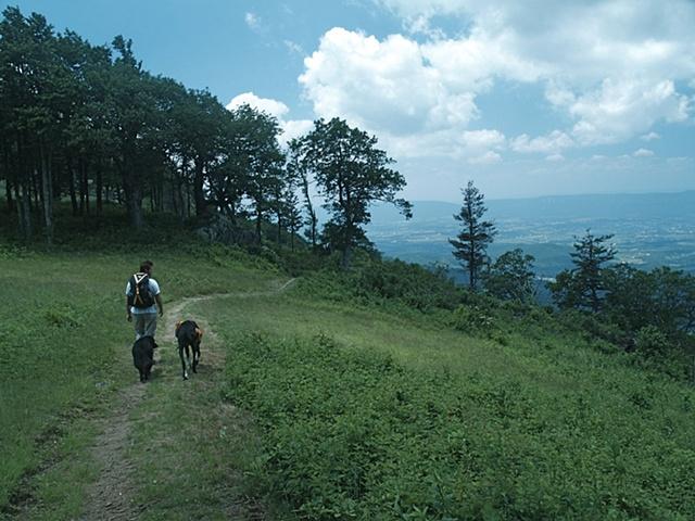 Jewel Hollow Trail