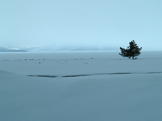 Yellowstone Lake Snowstorm