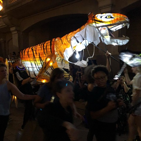 Giant TigerLantern Parade Puppet First time out!