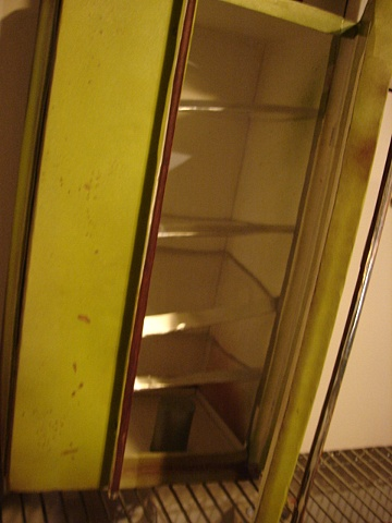 Interior on Avocado Fridge