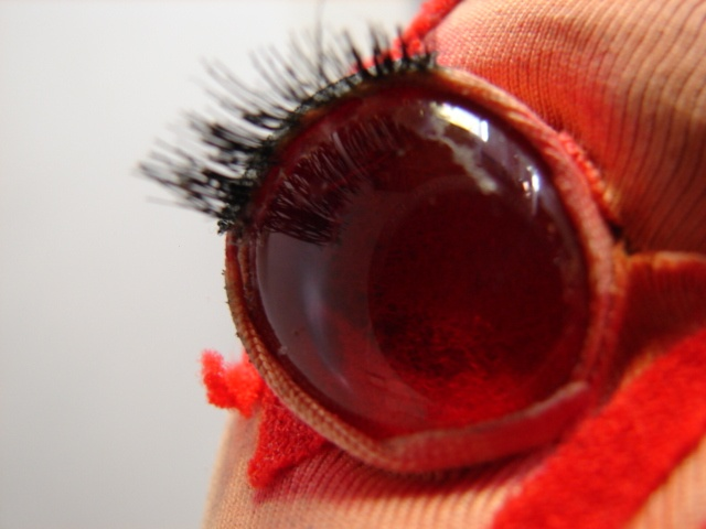Close Up ChestBurster Eye