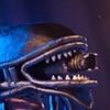 Profile Hero Alien