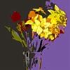 daffodils too