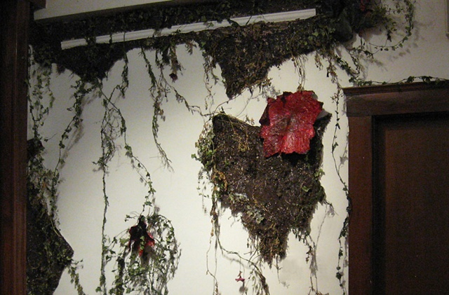 Growth and Decay Installation- Detail