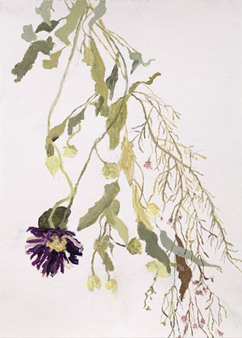 Falling Flowers Drawing, Dried Flowers