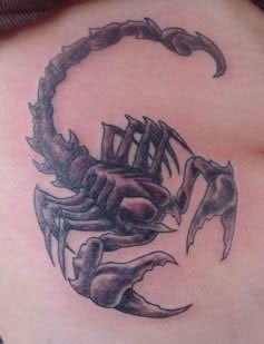 Scorpion on Ribs