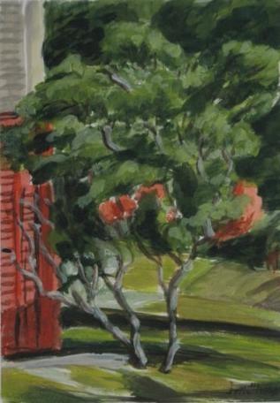 Garden Landscape: Shelburne, N.S.