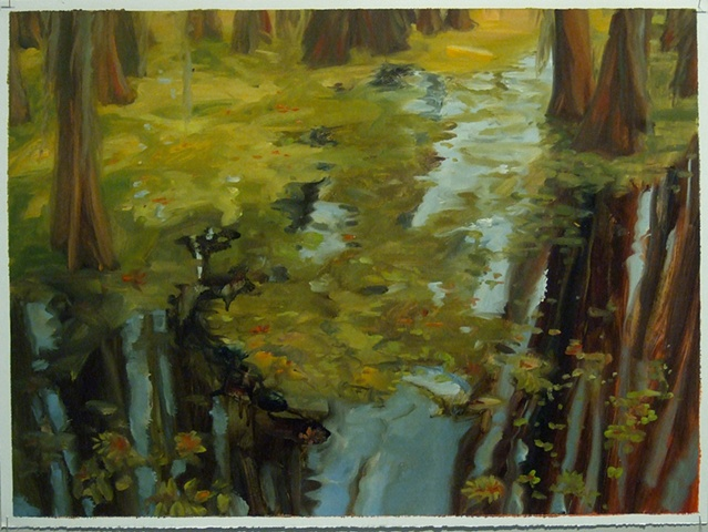 study for Giant Salvinia, Caddo Lake #4