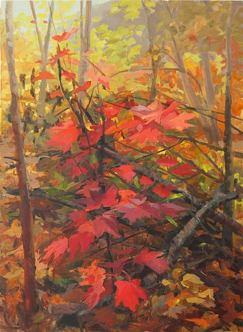 forest floor ozarks contemporary painting