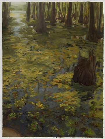 Study for Giant Salvinia, Caddo Lake #2