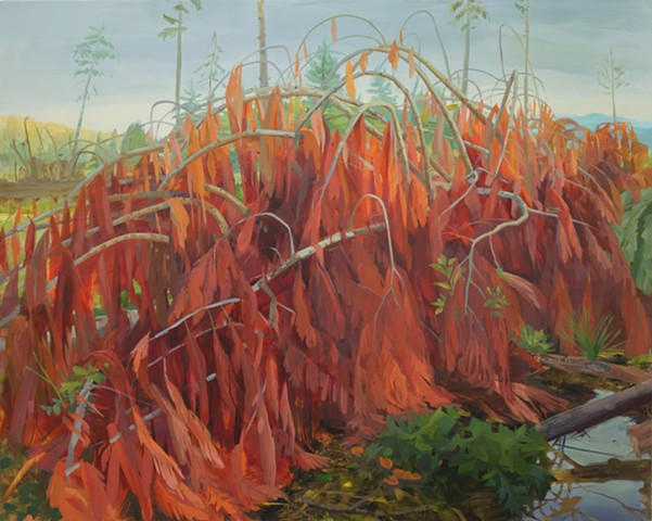 contemporary painting Olympic forest floor cedar