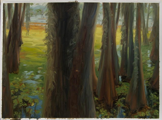 Study for Giant Salvinia, Caddo Lake #1
