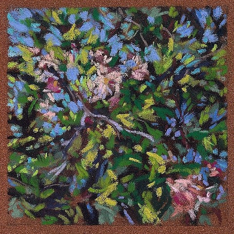 "Apple Blossoms (3.5 x 3.5"")"