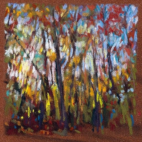 Woods Afternoon Light _4x4