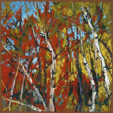 Pastel drawing autumn birch trees