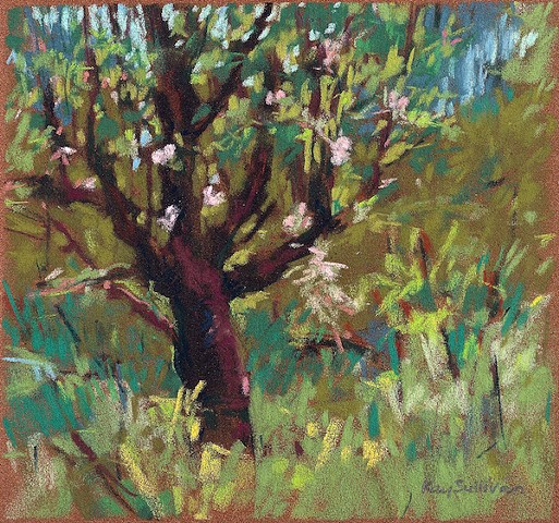 Pastel landscape spring apple tree