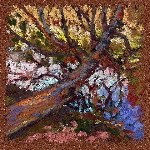 Uprooted Spruce 3.5x3.5""