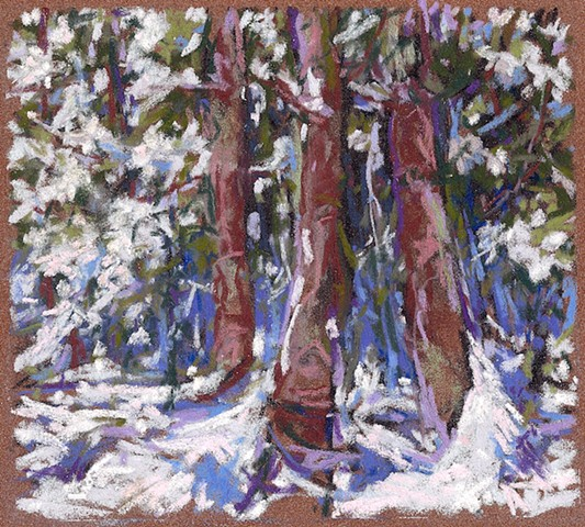 Woods In Snow (Three)_6x7