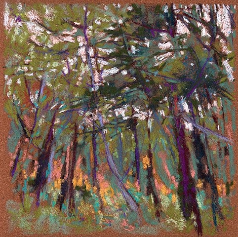 Pastel landscape in the woods trees